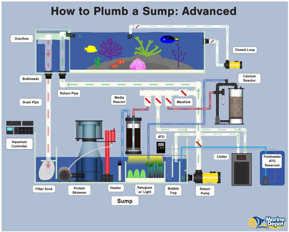 How to Plumb a Sump Basic Intermediate and Advanced