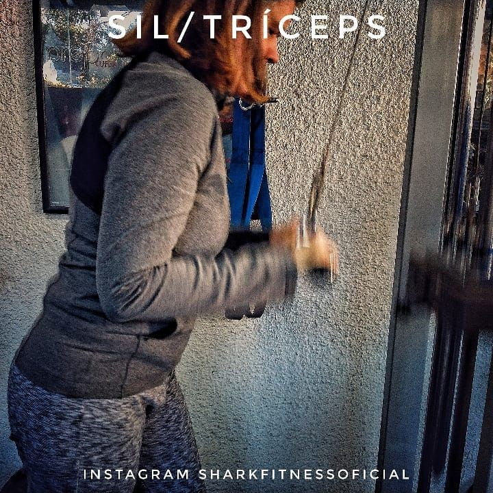 #fit #fitness #sharkfitness #weighttraining #entrenamiento #sobrecarga #triceps #personaltraining #p...