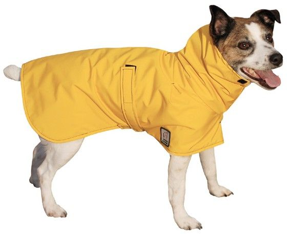 JACK RUSSELL Winter Dog Coat Waterproof Dog Jacket Winter | Etsy