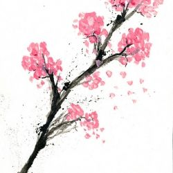 A Watercolor Paint Inspired By Japanese Cherry Blossom Cherry