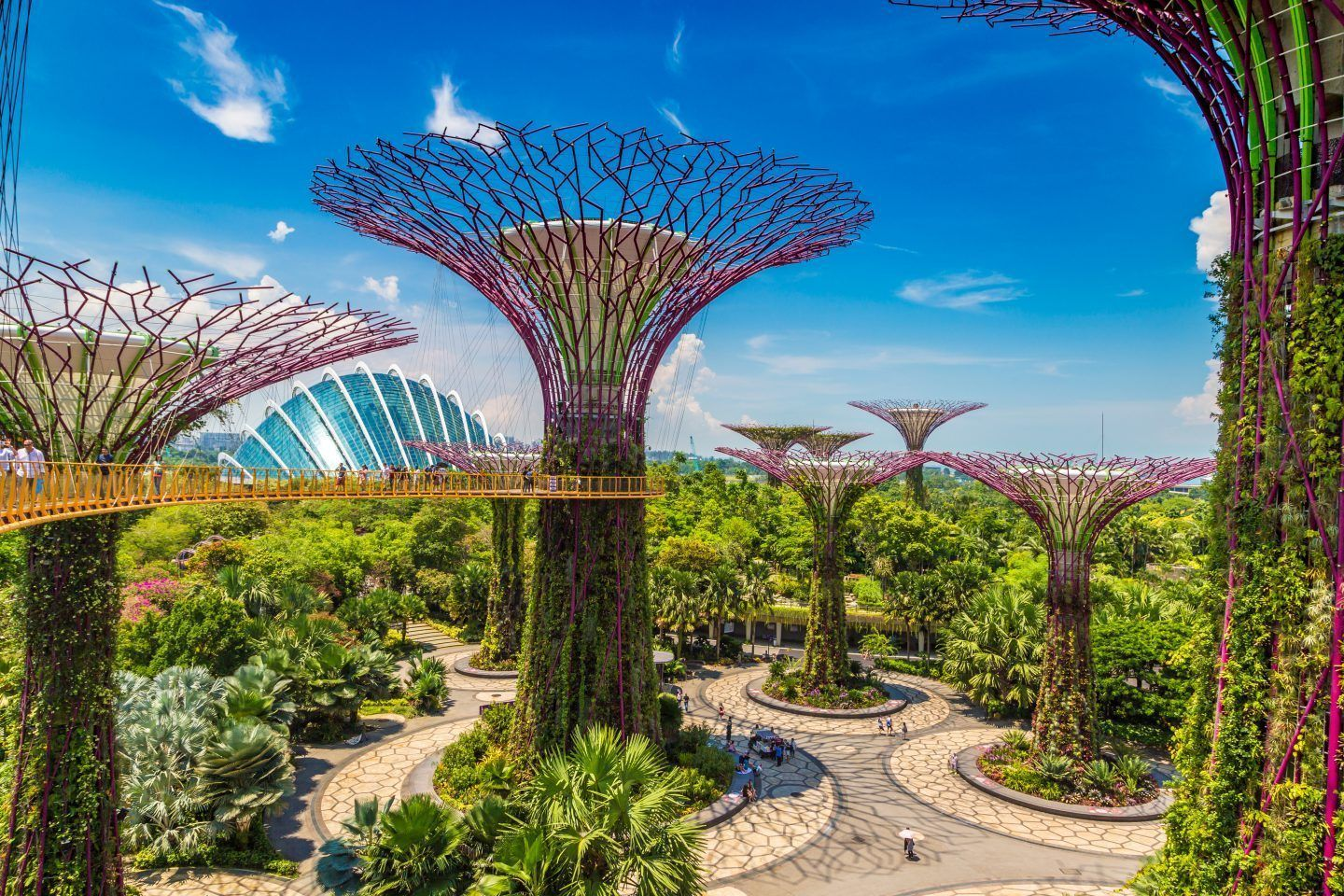 eb2c8ea2389188d7b5cd0270ecd9afaf - Fun Facts About Gardens By The Bay