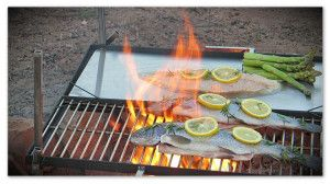 Grill and griddle for the campfire