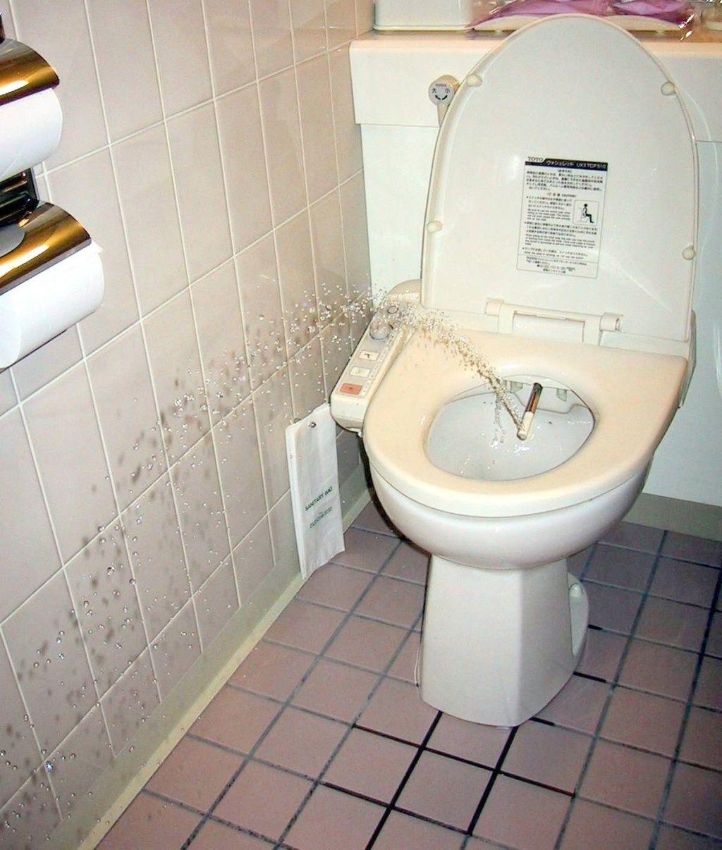 11 Fantastic Bathrooms In China Toilets In Japan Wikipedia In Ucwords Bathroom Bidet Toilet Japanese Toilet
