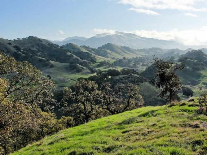 Top Things To See And Do In Walnut Creek Walnut Creek State - 10 things to see and do in california