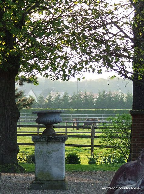 Urn on pedestal and horses....These are a few of my favorite things.....
