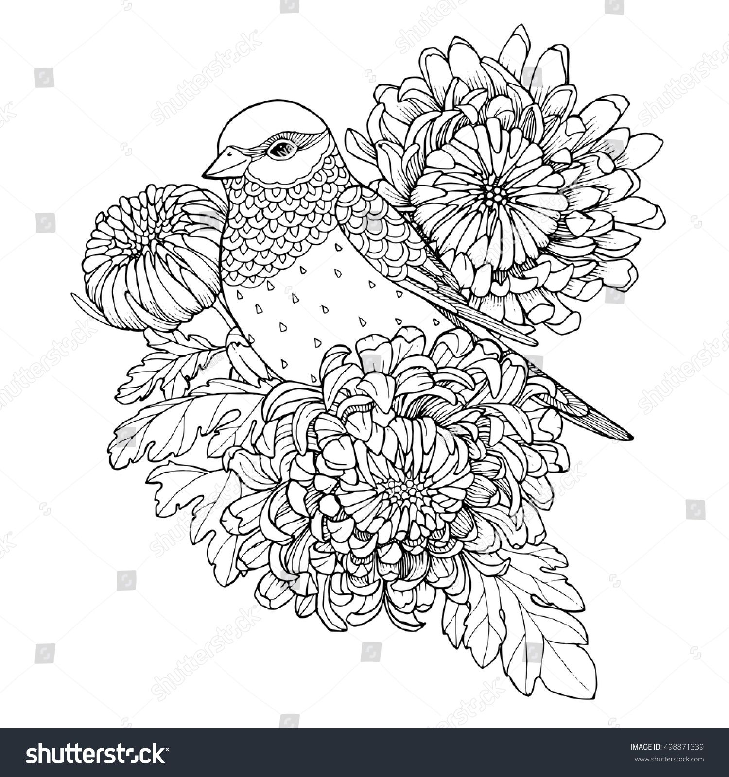 Patterned bird, sitting on chrysanthemum branch, zentangle page for ...