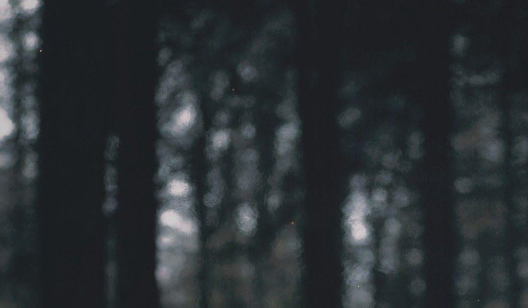 Wow 16 Wallpaper Alam Gelap Nature Landscape Portrait Display Wood Fire Branch Trees Gratis Wallpaper Senja Foto Piqs Di 2020 Gelap Latar Belakang Matahari Terbenam