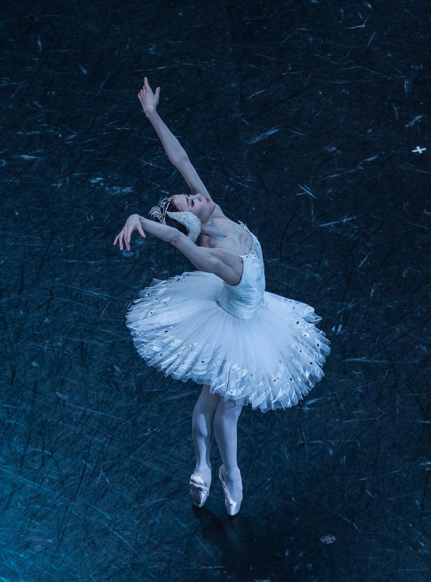 Ballet Opera Paris On Twitter Swan Lake Lake Photos Ballet Pictures