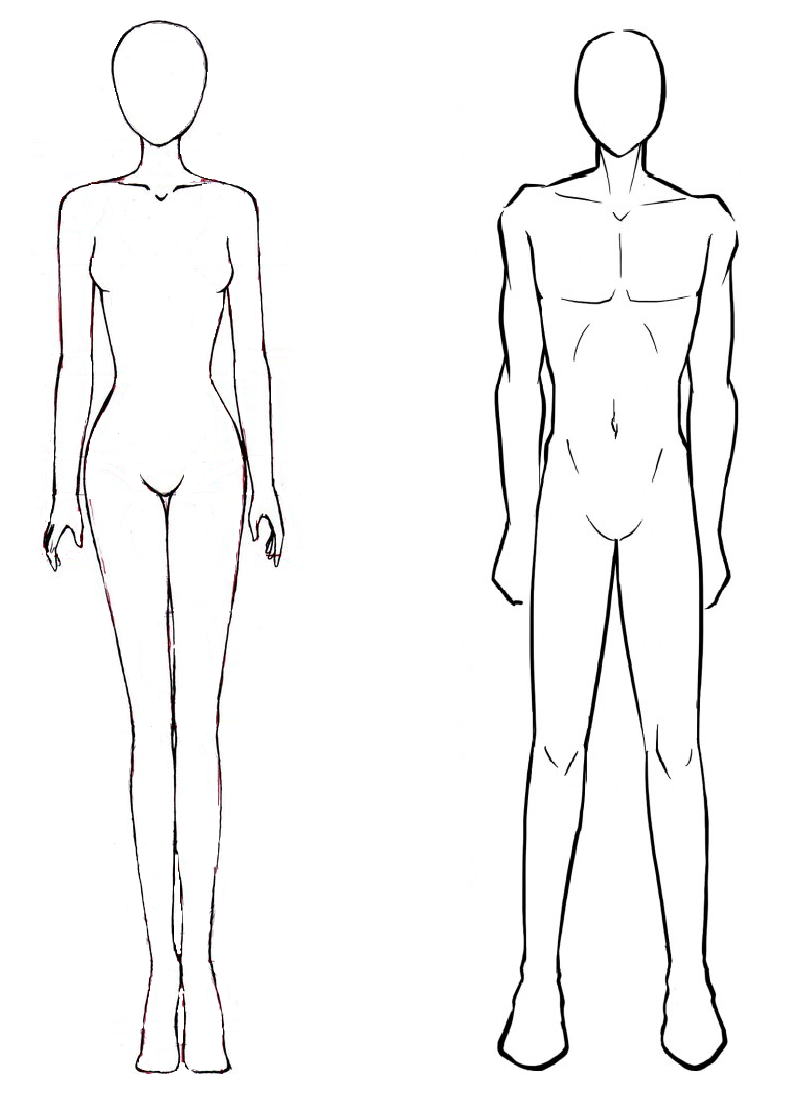 Male And Female Body Outlines Outline Drawing Poses Bodies