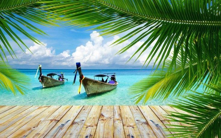nature landscape beach tropical