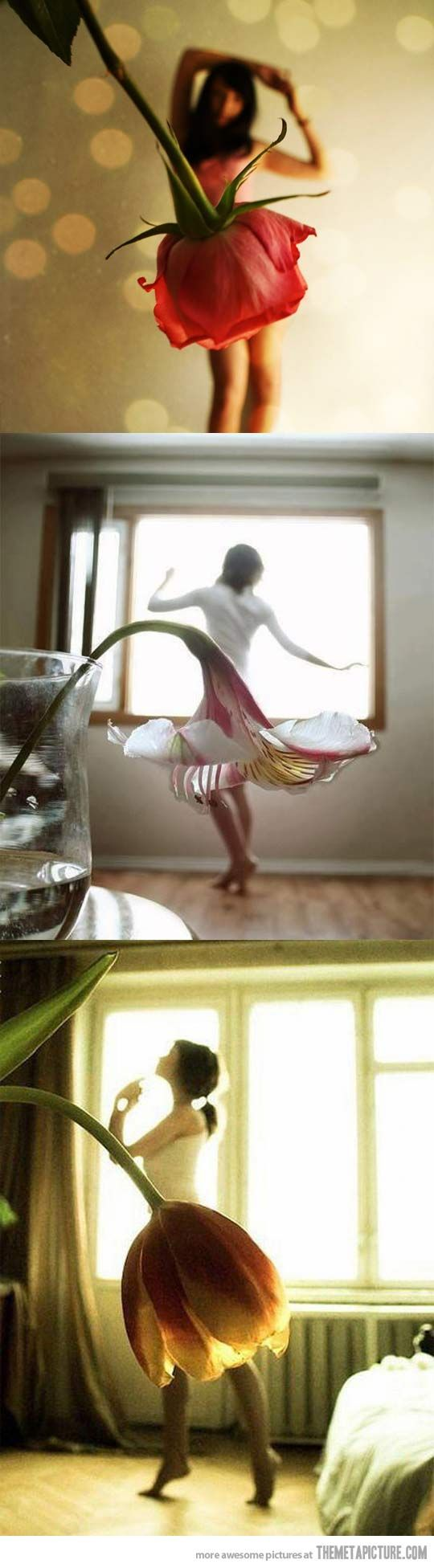 Three beautiful forced perspective photos…