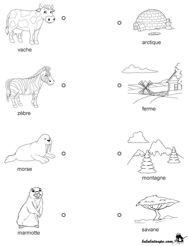Populaire Exercice gratuit, les animaux et leur lieu d'habitation | Fiche  RJ58
