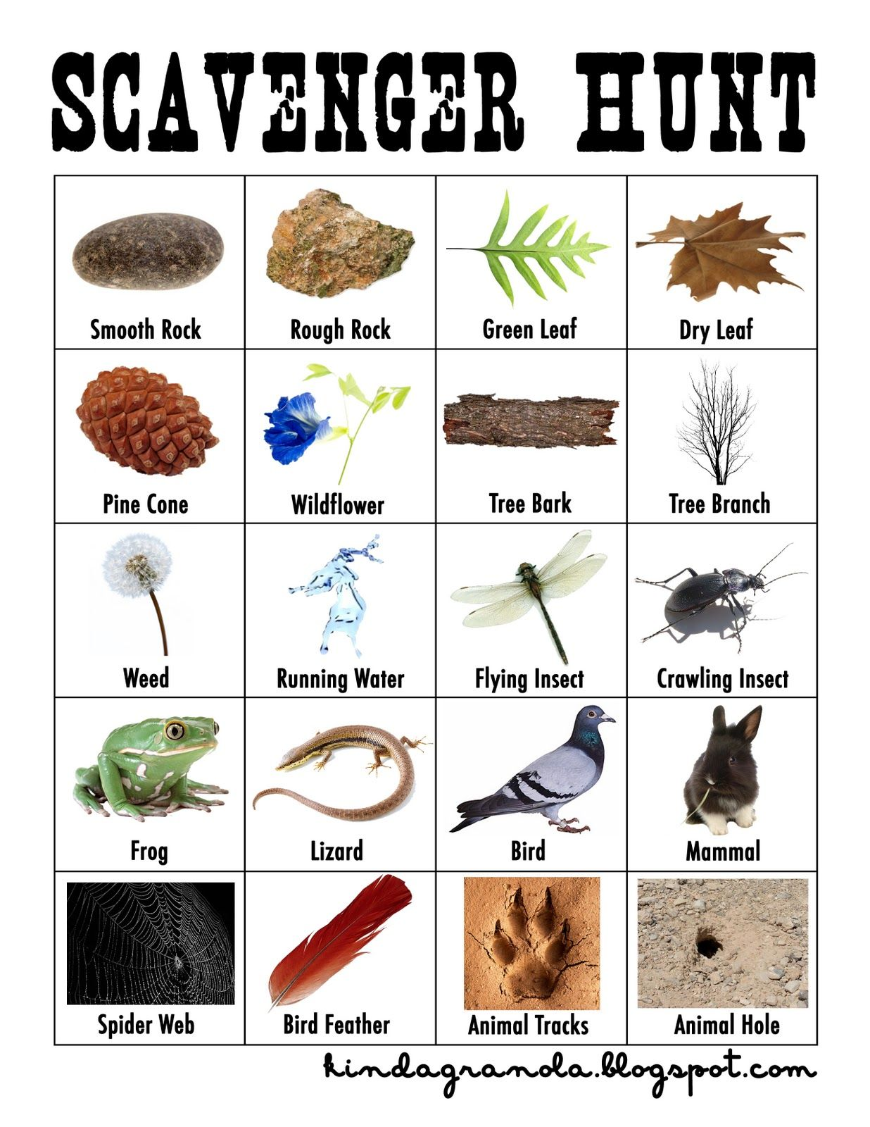 Selective image for nature scavenger hunt list printable