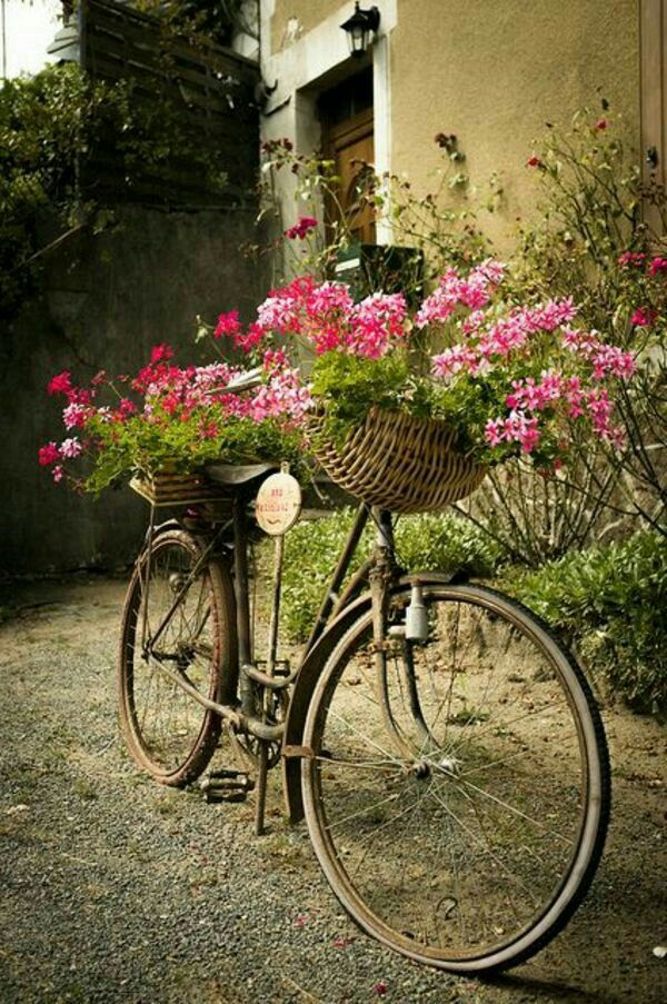 Pin by GOFFIN on VELO DECO JARDIN | Pinterest | Country decor and ...