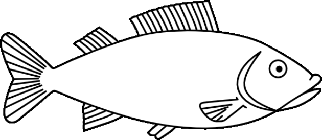 mewarnai gambar ikan fish outline animal outline clip art pinterest