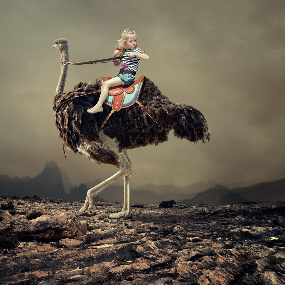 сюрреализм фото картинки процесс сопровождается