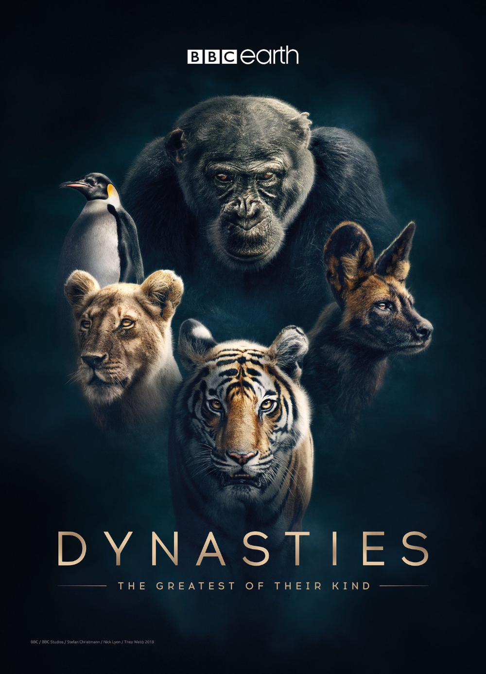 Bbc Dynasties Búsqueda De Google David Attenborough Wild Life Videos Documentaries