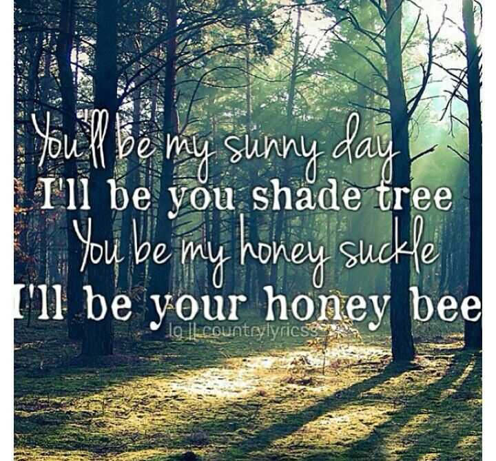 Blake Shelton- Honey Bee. Country songs. Country quotes ... - photo#7