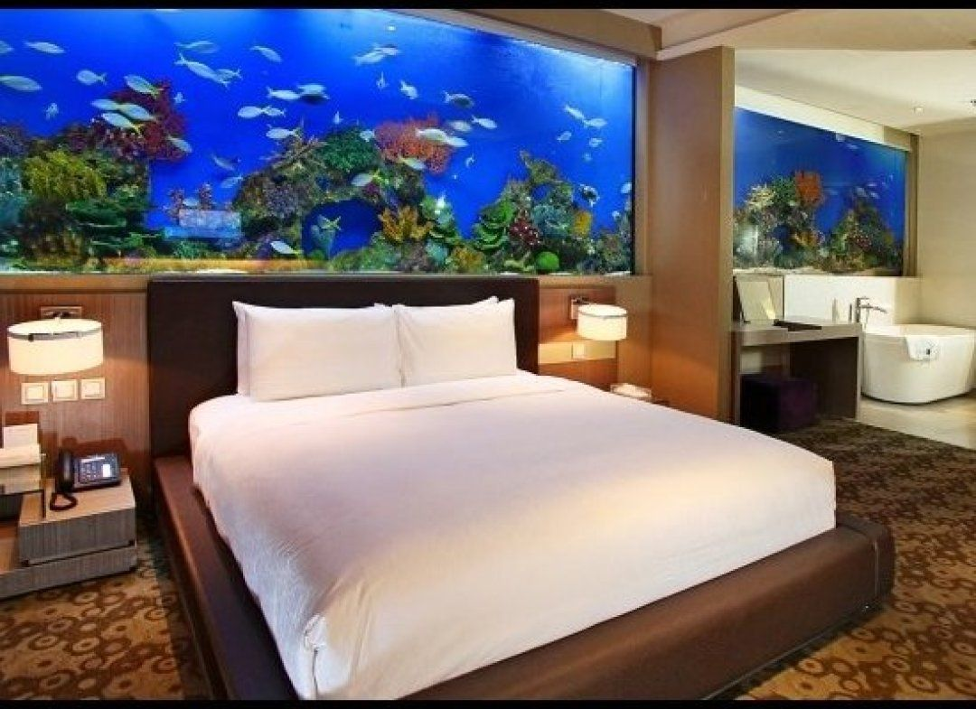 PHOTOS The Top 10 Hotel Aquariums Home, Home upgrades