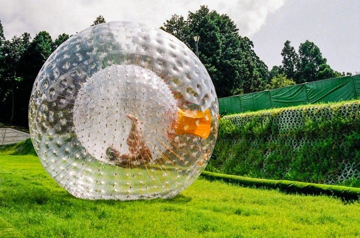 Zorb Ball India Holleyweb Com Ball Outdoor Toys Giant Inflatable
