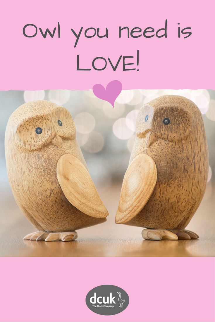 Owl You Need Is Love Gift And Home Decor Accessories Ideas From The