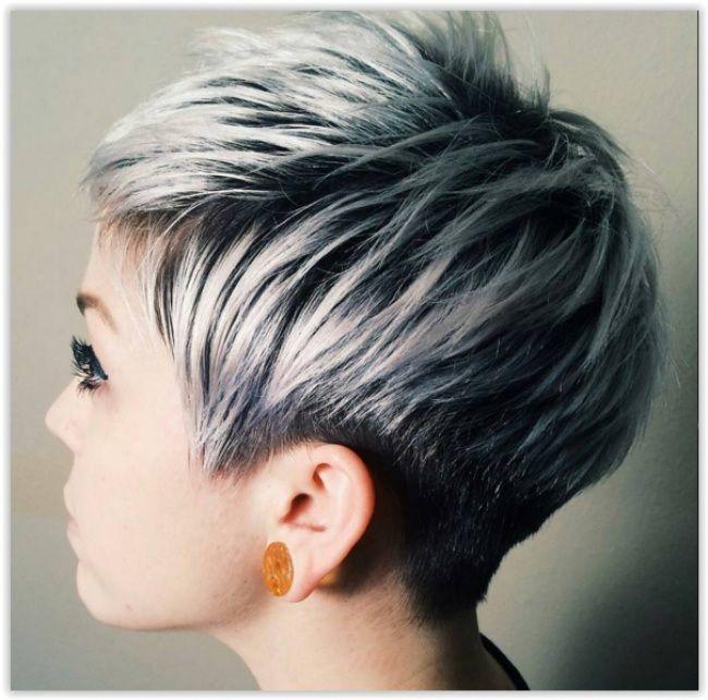 Coupe de cheveux court et gris