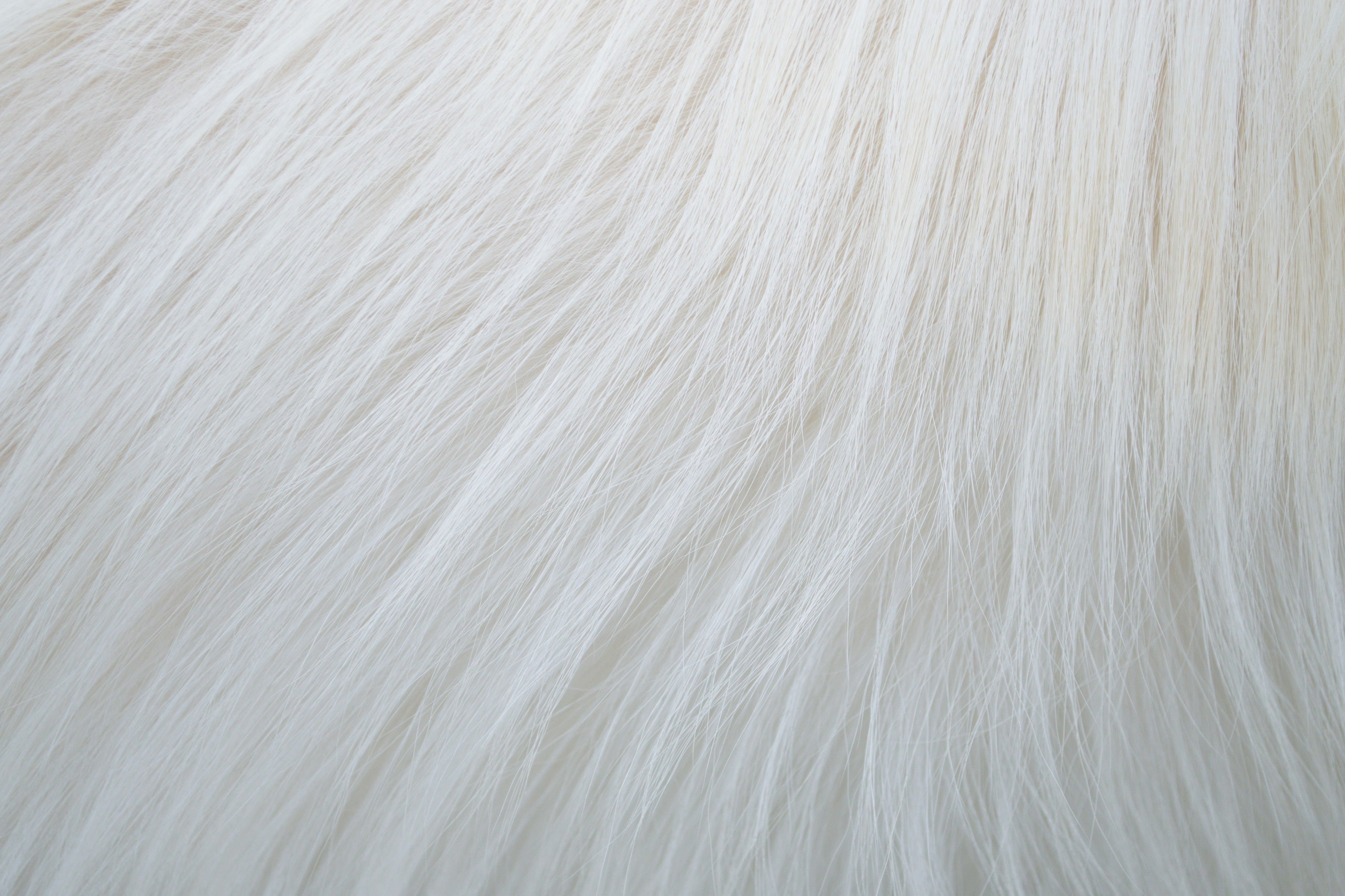 6 Dog Fur Textures Outside The Fray Drawing Texture