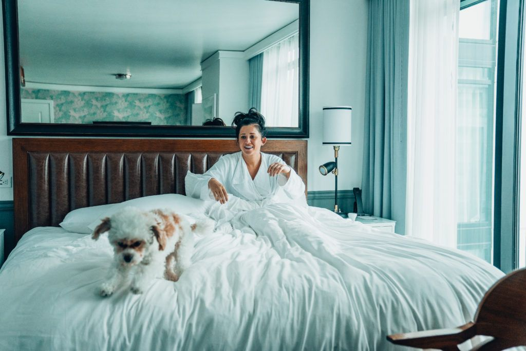 Dog Friendly Hotels And Restaurants In San Diego In 2020 Dog Friendly Hotels San Diego Hotels Dog Friends