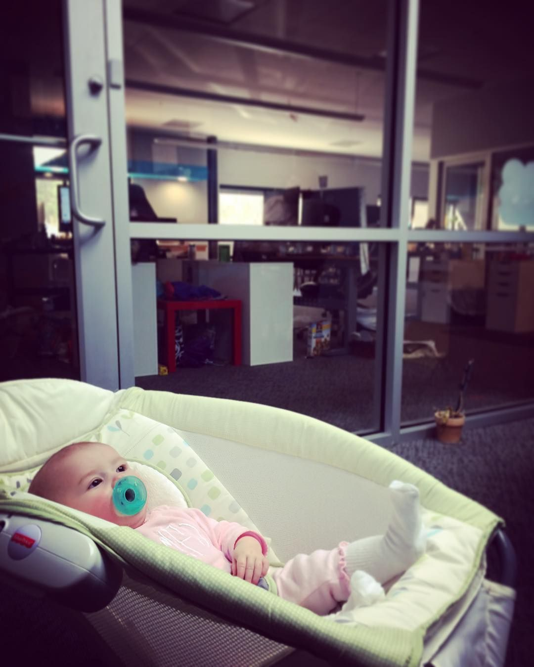 Excited to have a surprise visitor this afternoon! Thanks @johntflowers for bringing in #maddiejoy. We'd put her to work but she's way to cute for that! #frontierlabelbabies #cutenessoverload #wecanteven