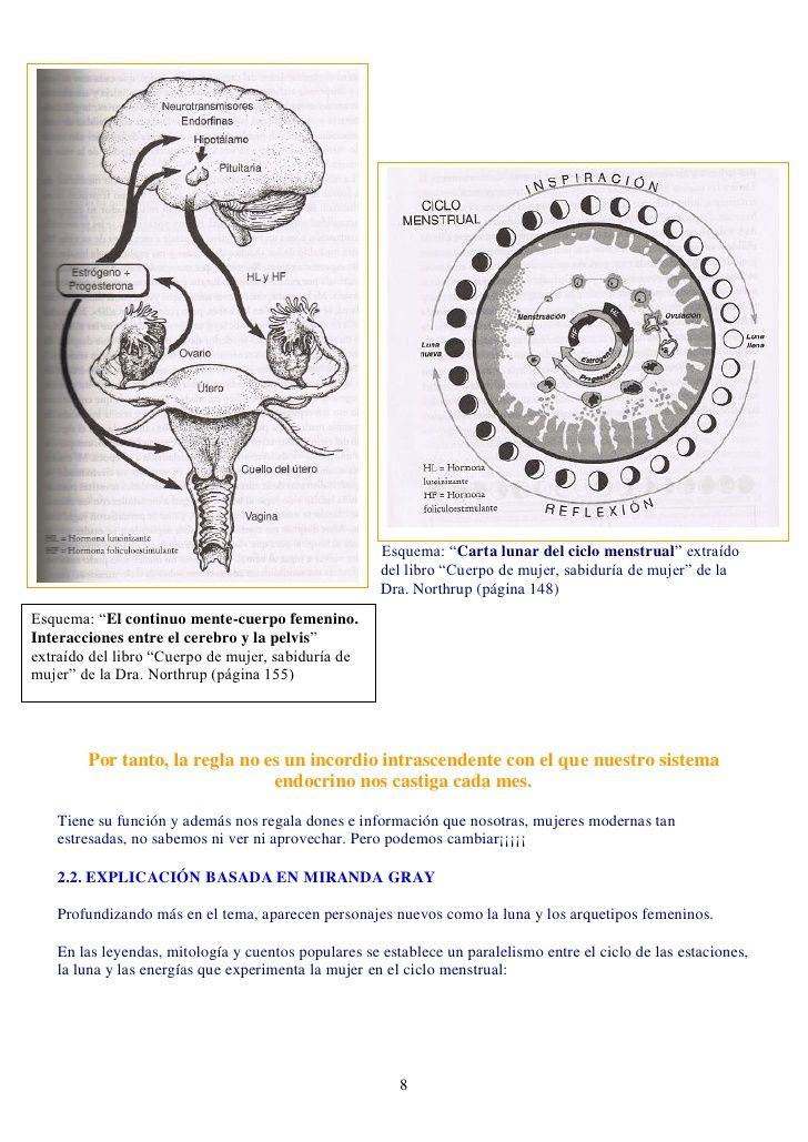 diagrama lunar pdf - Buscar con Google | Ciclo Menstrual | Pinterest