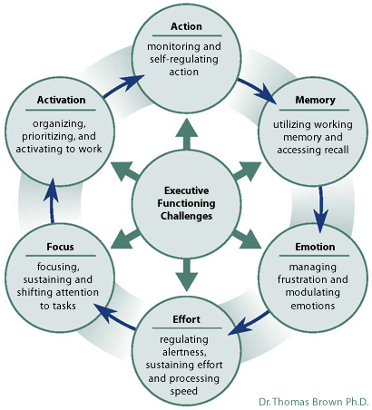 executive functioning challenges | SPARTAN1 | Pinterest | Youth ...