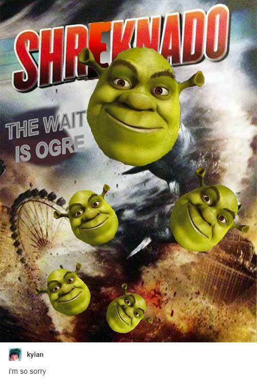 24 Funniest Things Tumblr Had To Say About Shrek Shrek Memes Shrek New Memes