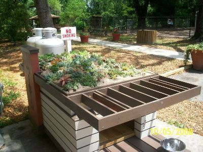 how to build a green roof my dog house google search pet things rh pinterest com