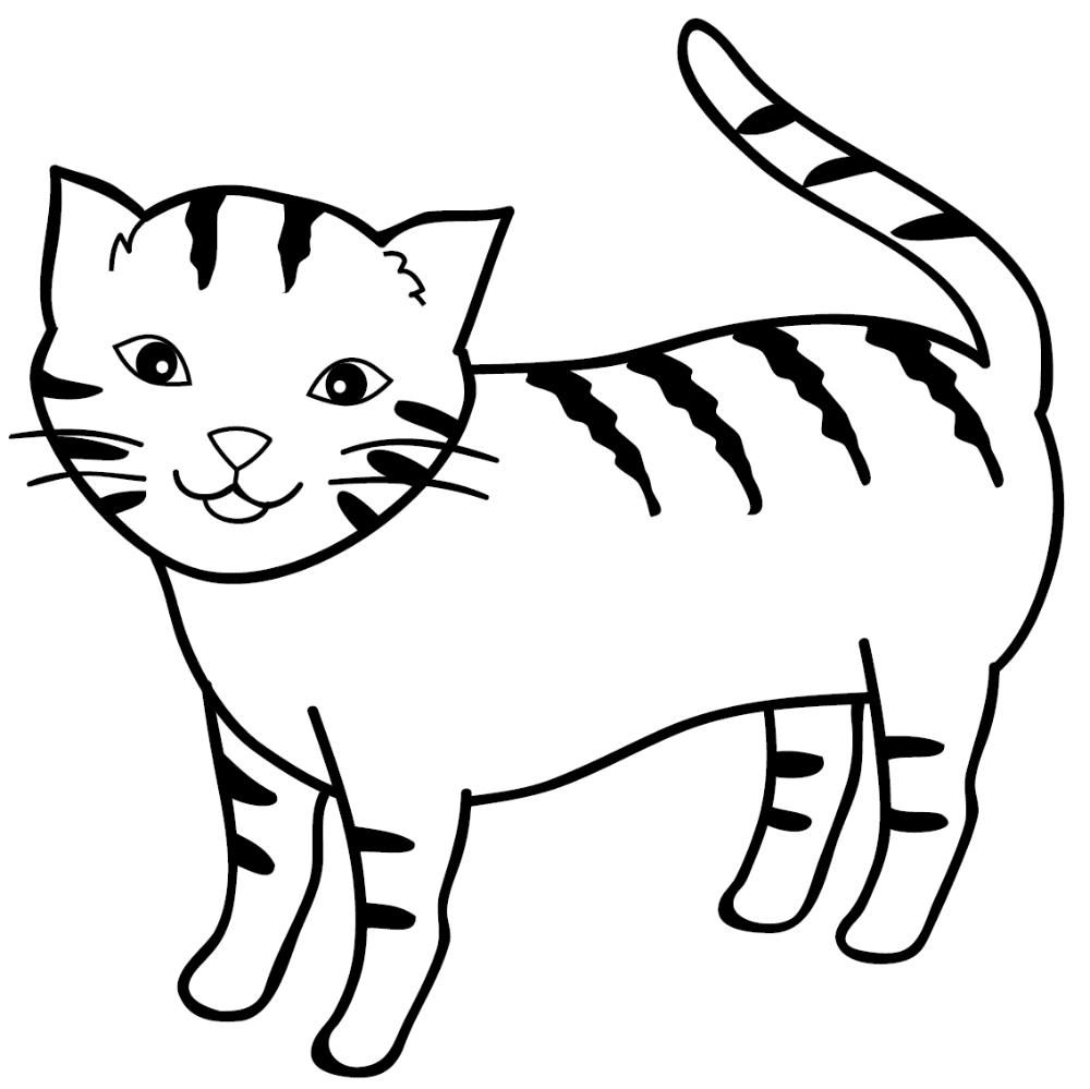 Gambar Kucing Jantan Kartun Hitam Putih Carian Google