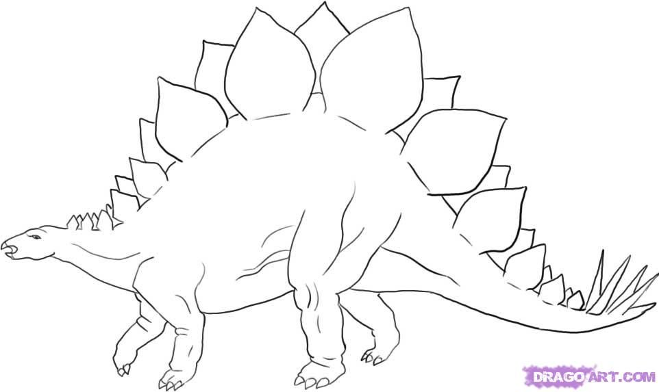 imgsstepsdragoart how-to-draw-a-stegosaurus-dinosaur - copy animal dinosaurs coloring pages