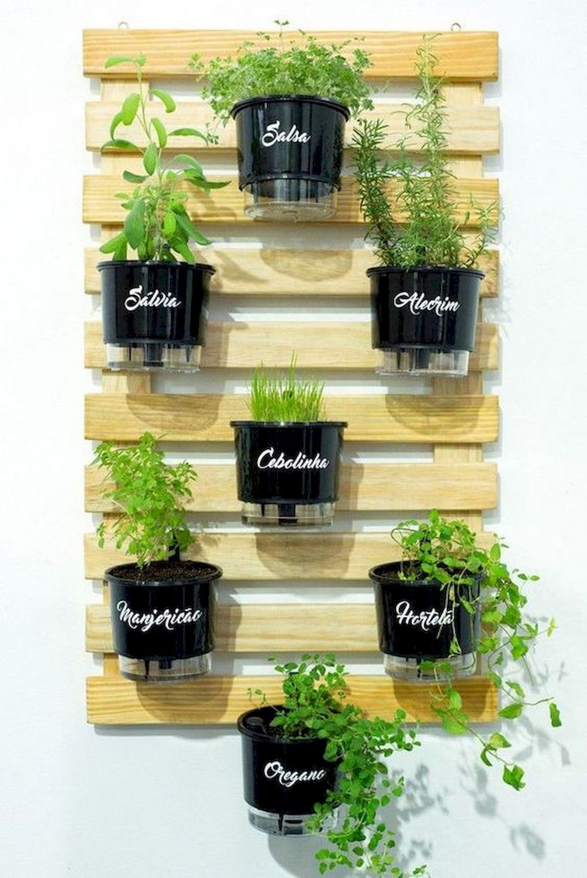 50 Inspiring Herb Garden Design Ideas And Remodel is part of Herb garden design, Garden, Indoor herb garden, Herb garden, Vertical garden, Indoor garden - Every garden needs herbs! Herbs like rosemary are what bring meals to life, and you only need a few sprigs or leaves to contribute bags of flavor and turn the ordinary into the extraordinary  Herb gardens may be designed to… Continue Reading →