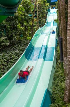 Adventure Cove Waterpark, Singapore - S.E.A aquarium in Singapore - one of the best things to do in Singapore with kids!