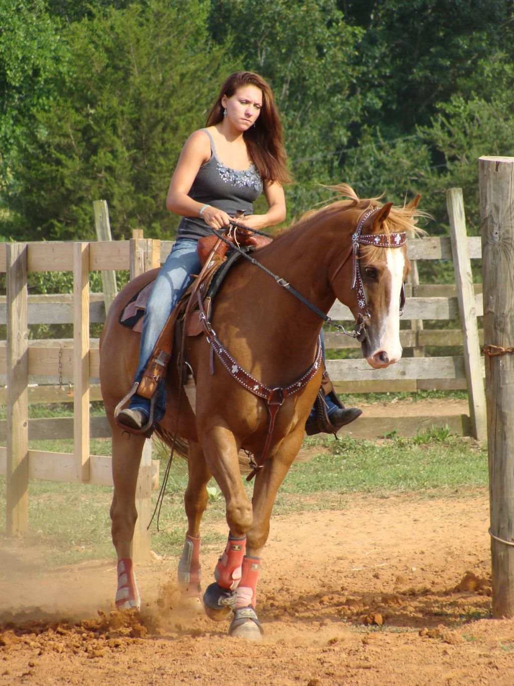 Monster Rally Car Wallpaper Taylor Earnhardt And Her Horse Packin Sixes Cowboy