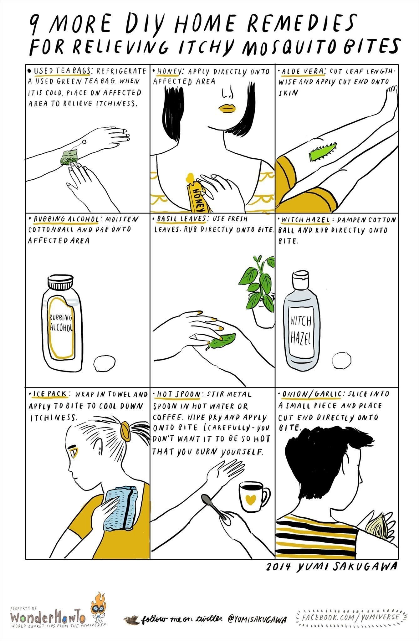 How To: 9 More DIY Home Remedies for Relieving Itchy