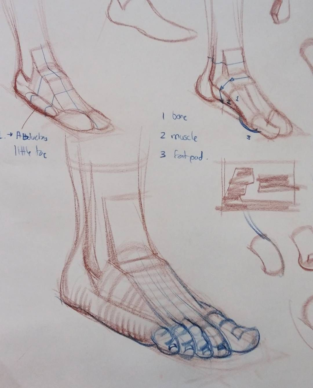 More demos afoot #art #figure #drawing #anatomy #anatomydrawing ...