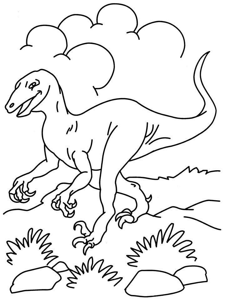 Printable Dinosaur Coloring Pages Printables Pinterest Pdf and - copy animal dinosaurs coloring pages