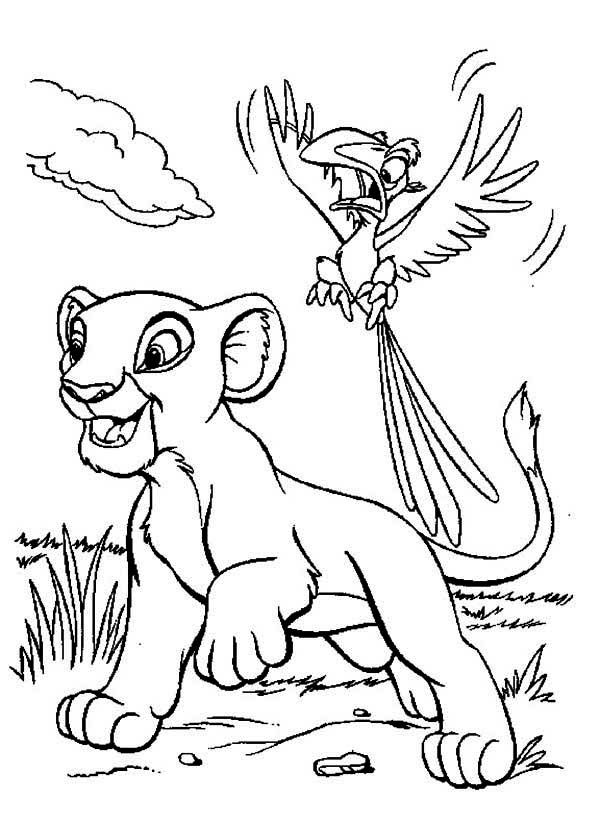 The Lion King Simba And Zazu Coloring Page Lion King Drawings