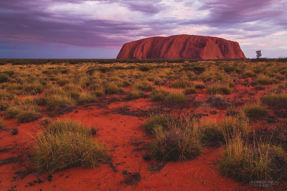 Ultimate Guide to Ayers Rock - Uluru - Kata Tjuta National Park #naturallandmarks