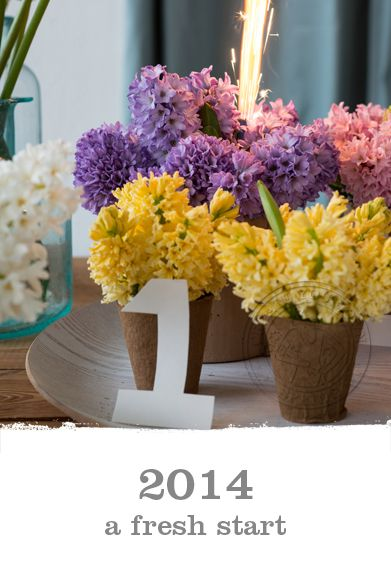 2014 a fresh start #new year wish. With the scent of hyacinthus #spring is coming soon