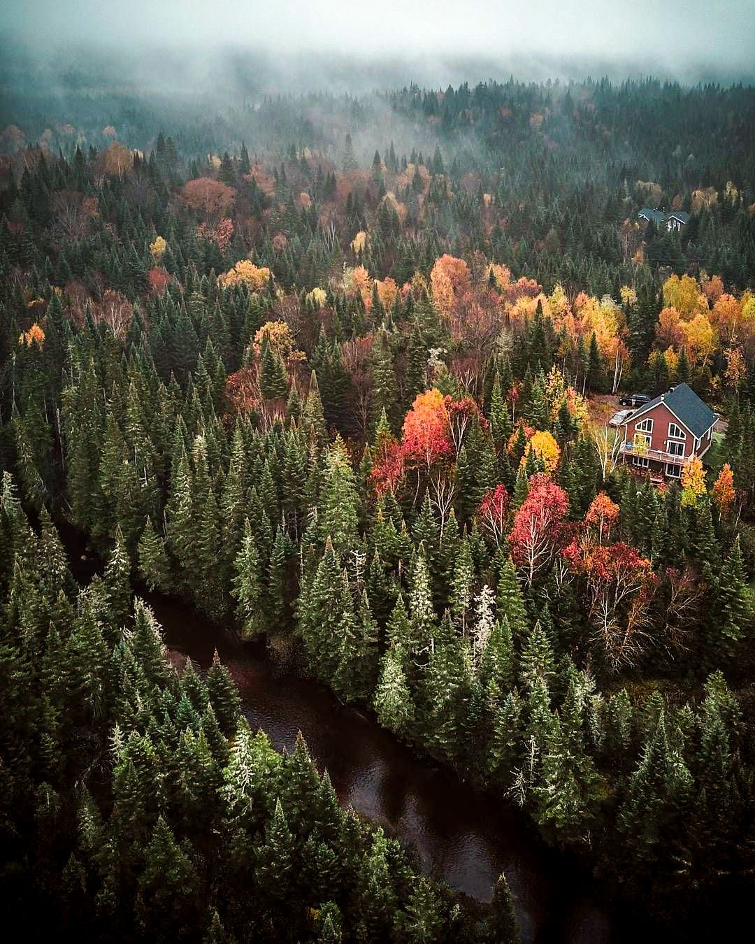 Cabin in the woods (Mont-Tremblant, Québec) by Zimy Da Kid (@zimydakid) on Instagram