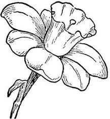 Resultado De Imagen Para Ramos De Flores Grandes Para Colorear Flores Para Imprimir Flores Para Dibujar Drawing Lessons