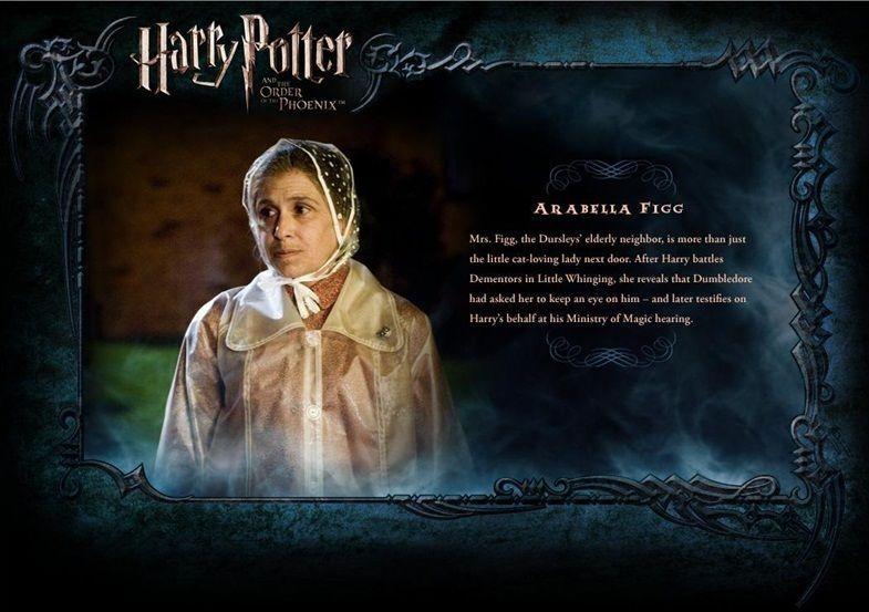 Harry Potter Photo Ootp Character Description Mrs Figg Harry Potter Potter Character Profile
