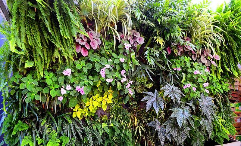 Jardines verticales sevilla finest jardn vertical en for Jardines verticales sevilla