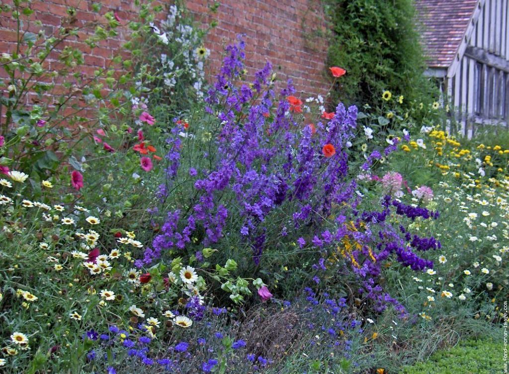 La beaut d 39 un jardin anglais jardin anglais pinterest for Jardin anglais pinterest