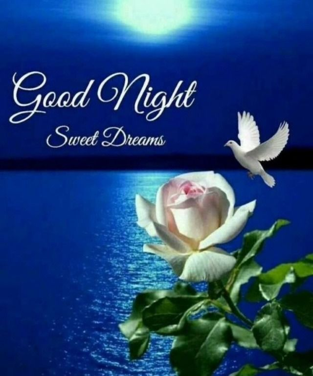 New Good Night Whatsapp Images Free Download For Whatsapp Gn Pics